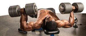 Muskelerhaltung nach einem Dianabol-Zyklus